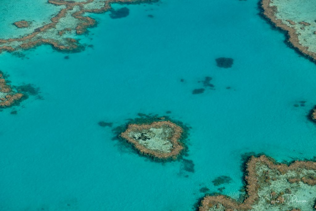Heart Reef on the Great Barrier reef on the Whitsundays